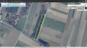 Działka rolno-leśna 5402 m2 w Czarnej k/Pionek